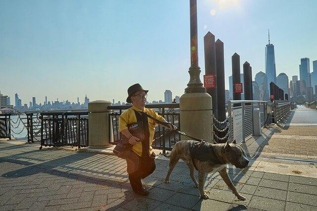 Mies kävelee koiran kanssa